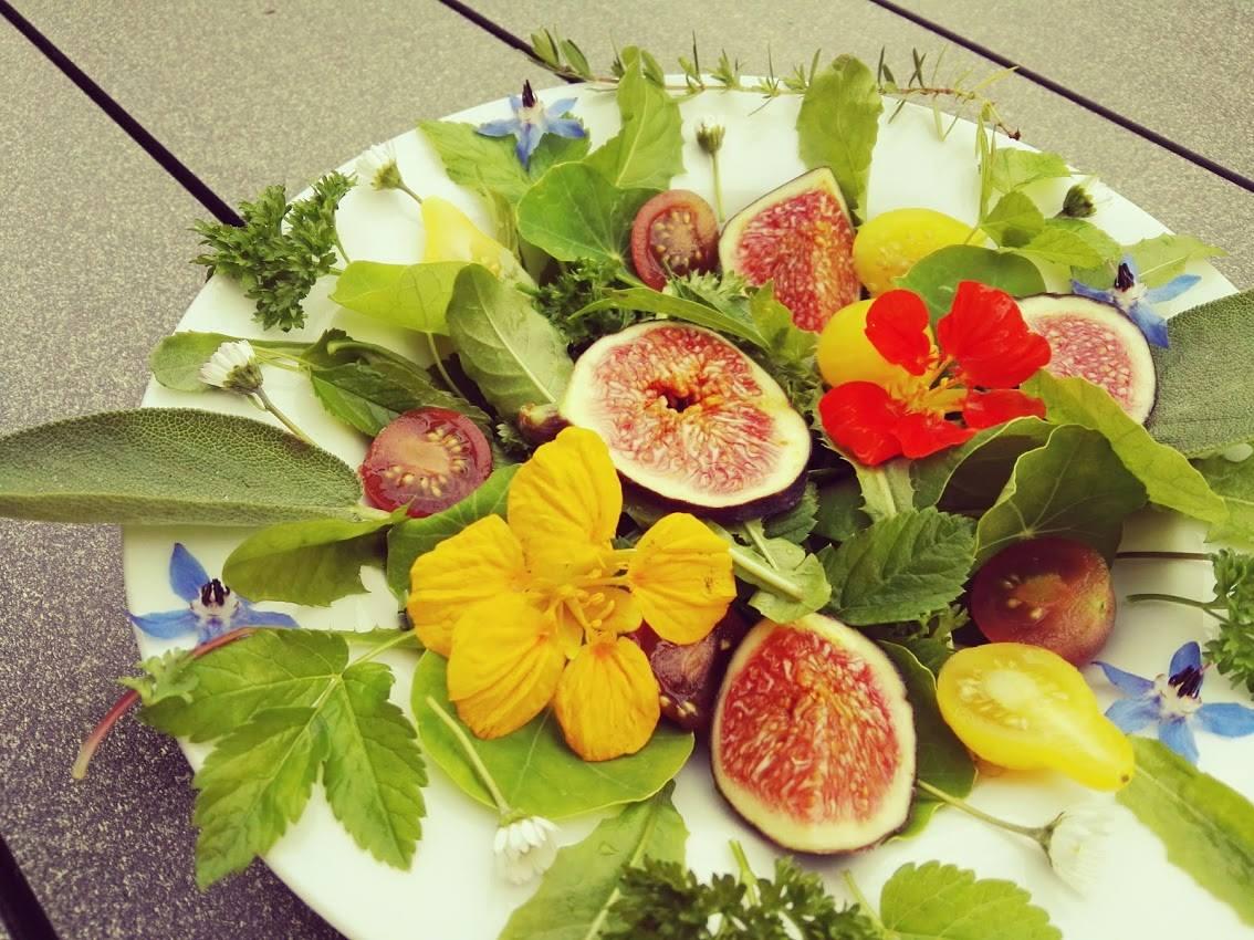 Selbst gepflückter Salat