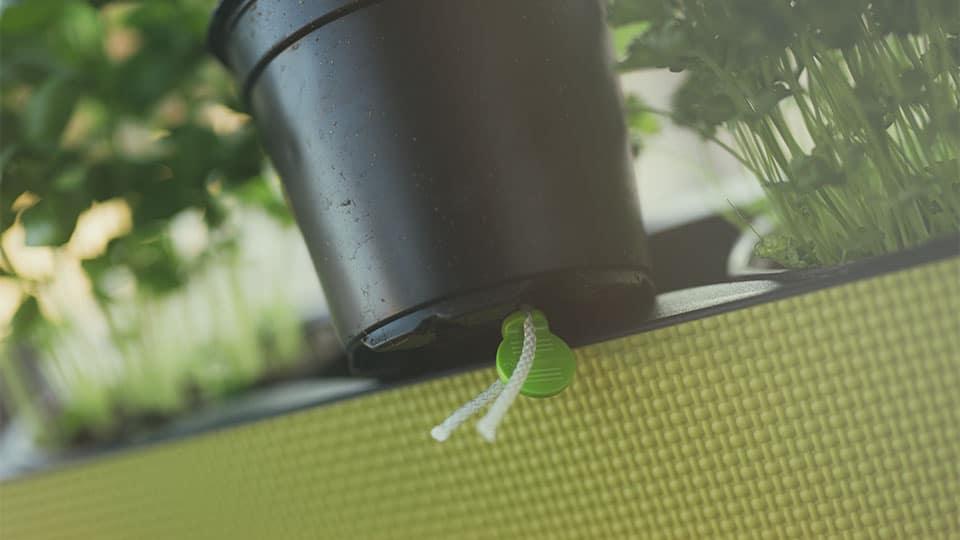 Mein selbstgießendes Pflanzgefäß für drinnen und draußen