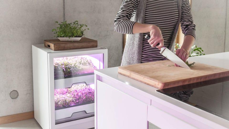 Ist das die Zukunft des eigenen Gartens?