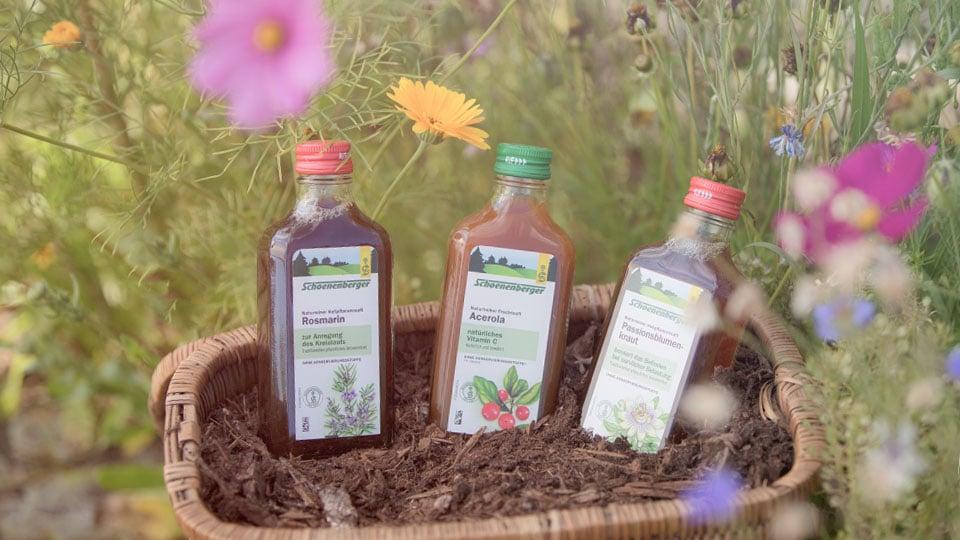 Saft aus frisch gepressten Pflanzen
