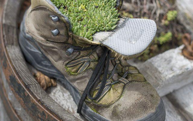 Natron hilft bei stinkenden Schuhen