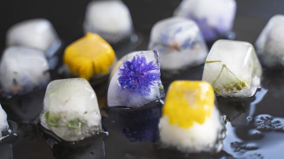 Eiswürfel Blüten
