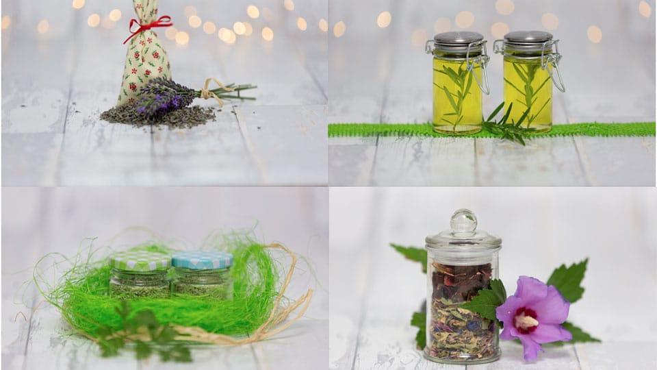 DIY Kräutergeschenke zur Hochzeit oder zum Geburtstag