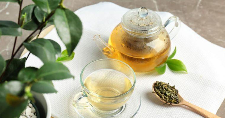 Teepflanze – was man darüber wissen sollte