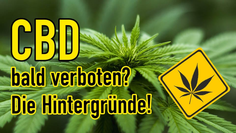 CBD – Verbot bald auch in Deutschland?
