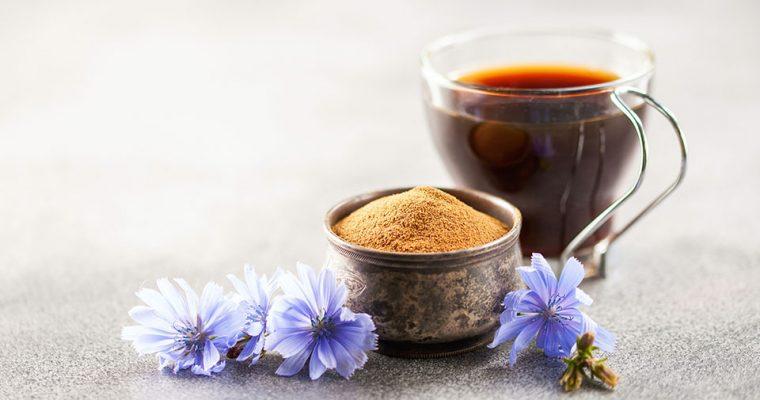 Wilder Kaffee aus Wegwarte (Zichorienwurzel)
