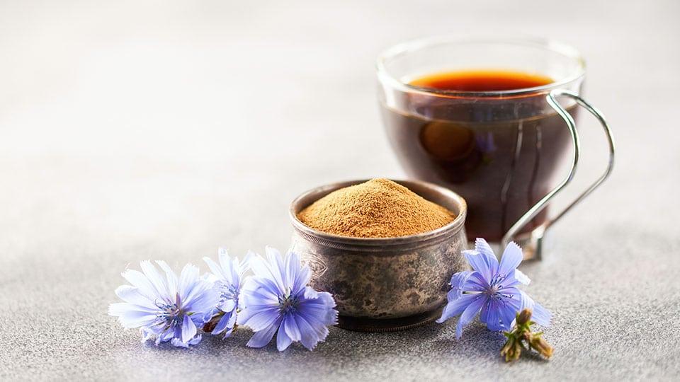 Muckefuck aus Wegwarte (Zichorienwurzel) – Wilder Kaffee