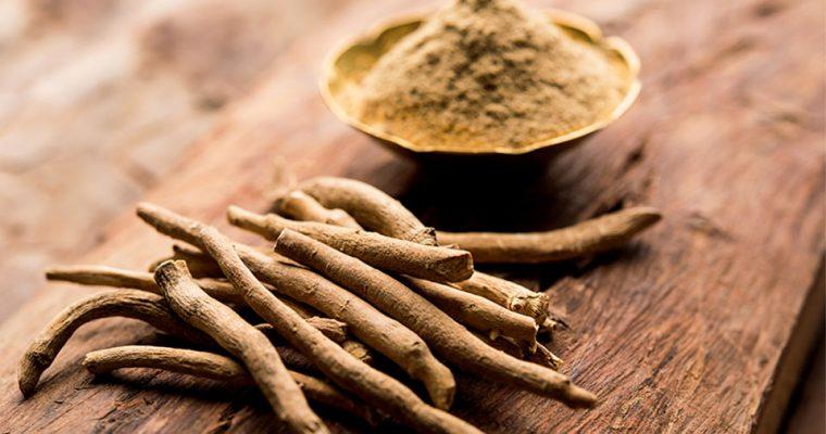 Ashwagandha Wurzelpulver – ein wichtiges Adaptogen: Verwendung und Rezept