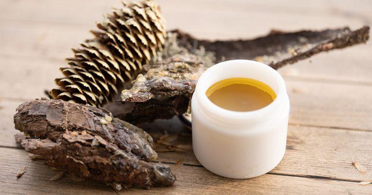 Pechsalbe – Warum man immer etwas Baumharz Salbe im Haus haben sollte