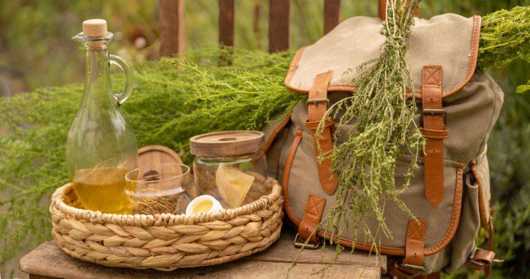 Beifuß (Artemisia) Salbe herstellen – Was kann die Salbe?