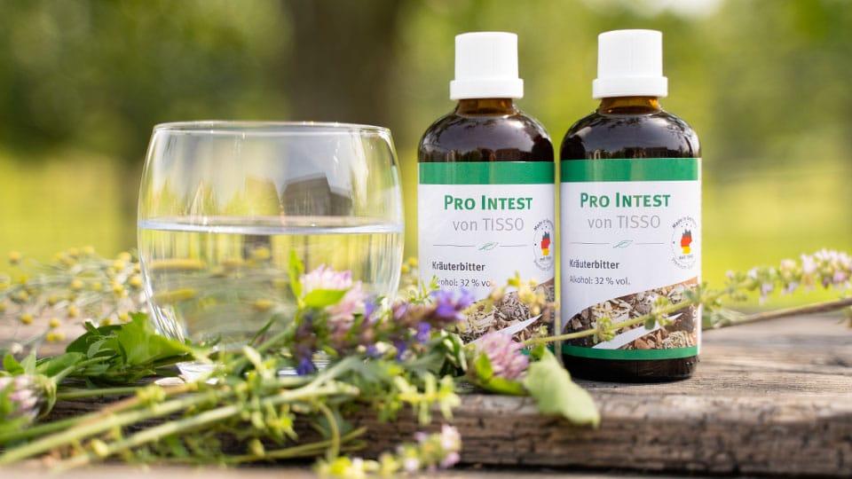 Bitterstoffe Pro Intest von Tisso