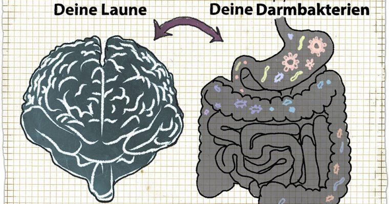 Unser Mikrobiom im Darm – Wie Darmbakterien uns beeinflussen