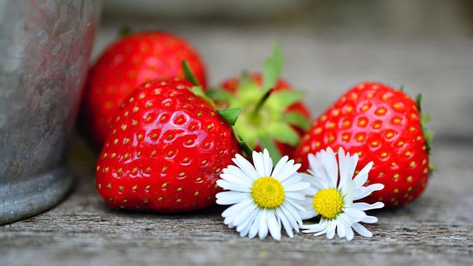 Erdbeere regional kaufen