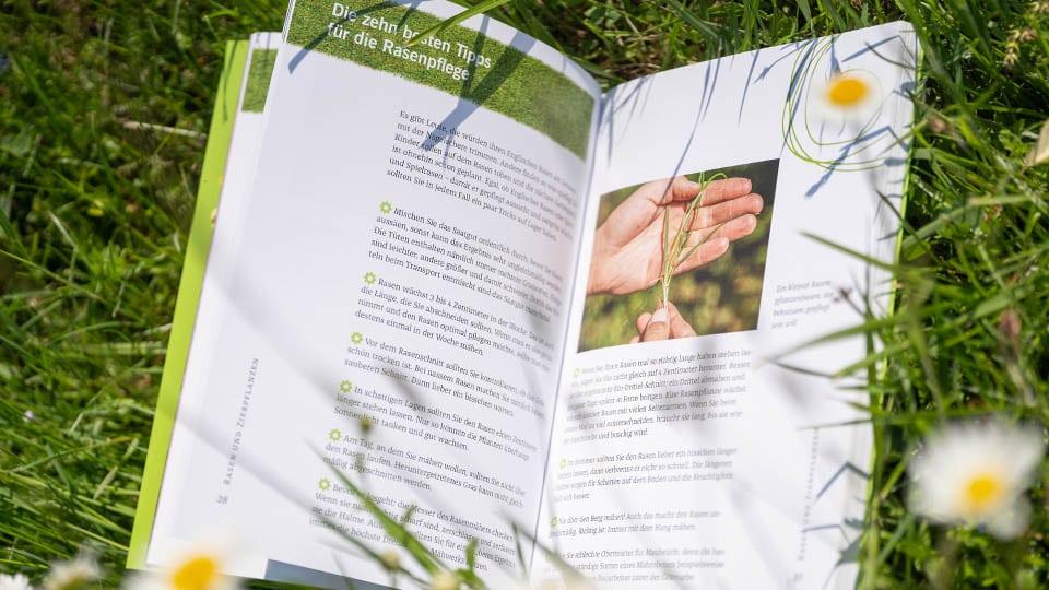 Die 10 besten Tipps zur Rasenpflege von Garten Docs