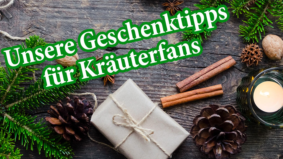 Nachhaltige oder gesunde Geschenktipps für Weihnachten