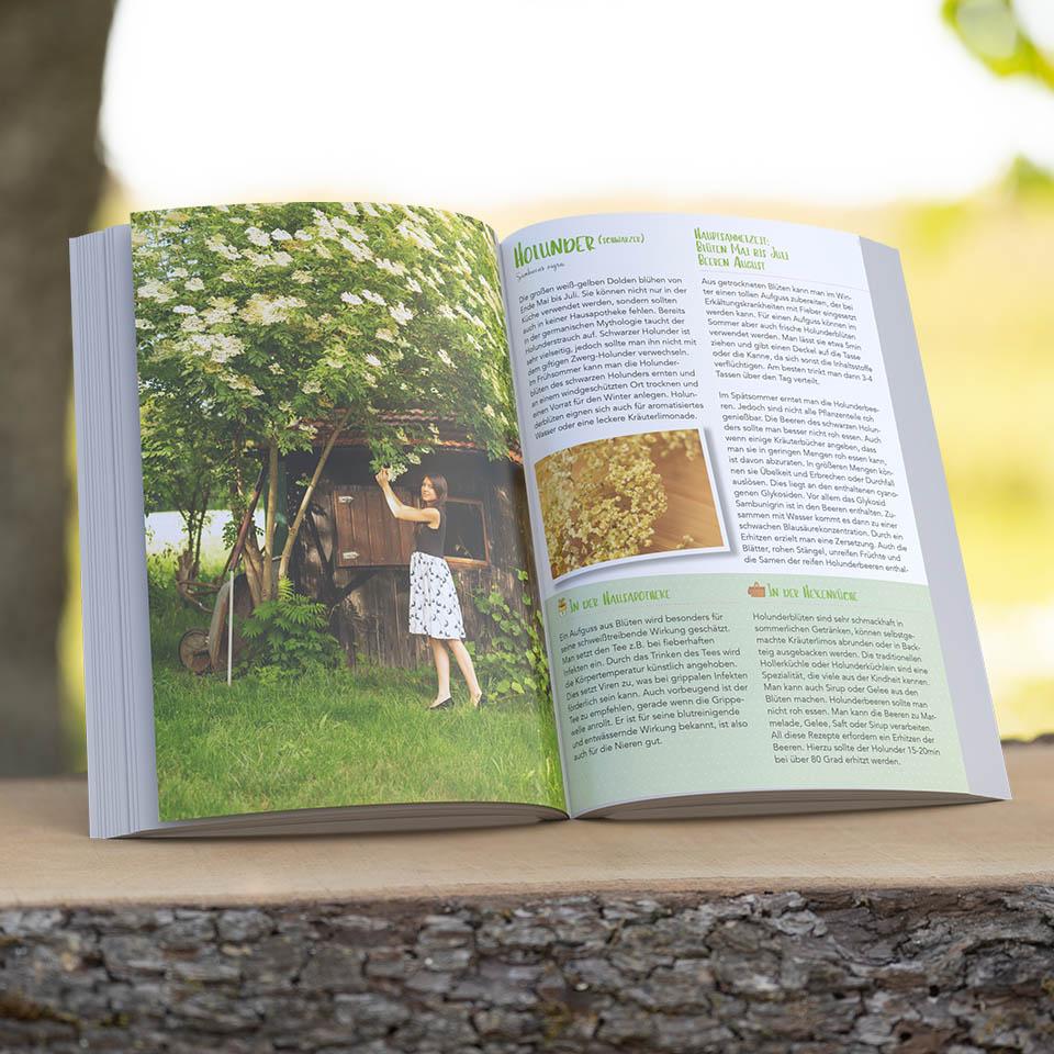 Ein Blick in unser neues Buch: Holunder