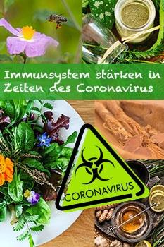 Dein Pin zum Thema Immunysytem stärken in Zeiten des Coronavirus