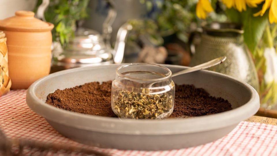 Kaffeesatz und Teesatz als Dünger