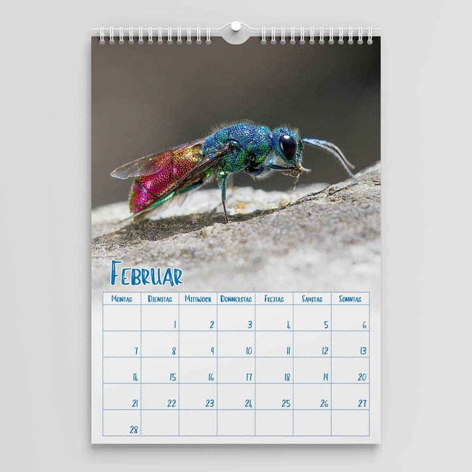 Kräuterkeller Jahreskalender 2022