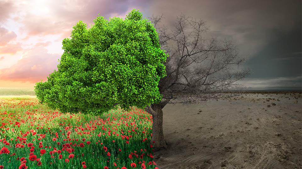 """Umweltforscher bestätigen: """"Die schmerzhafte Phase des Klimawandels hat begonnen."""""""
