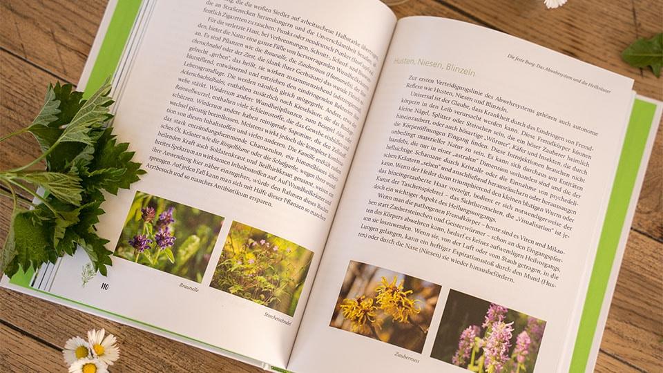 Kräuterkunde ist im Verlag Kamphausens Media erschienen
