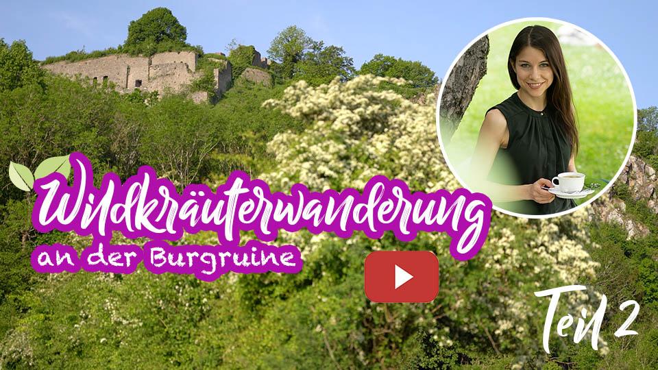 Wildkräuterwanderung an der Burgruine Teil 2 – Wiesen Wildkräuter erkennen