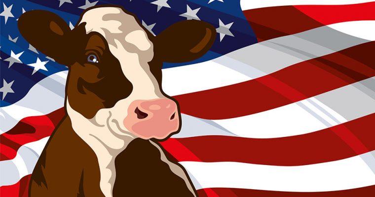 Veganes Umdenken? Zweitgrößter Milchproduzent der USA meldet Insolvenz an