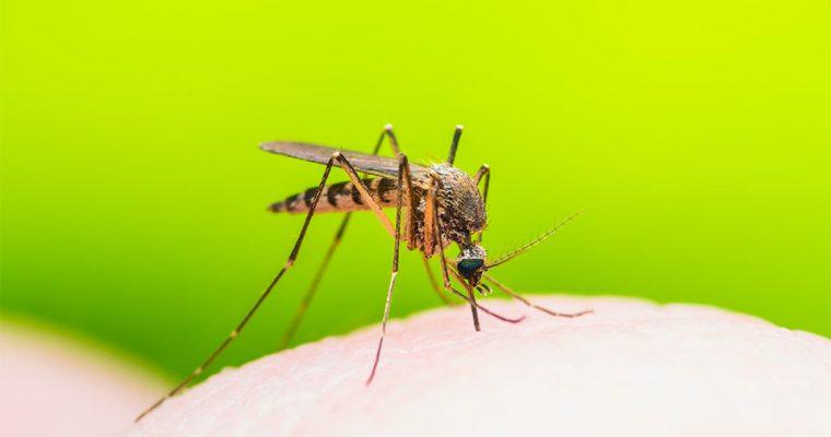 Natron – Natürliches Hausmittel bei Mückenstichen