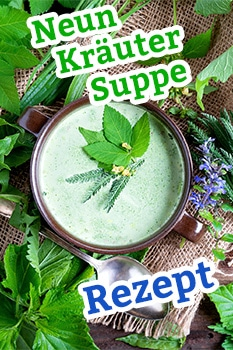 Pin für die Neun Kräuter Suppe - Rezept
