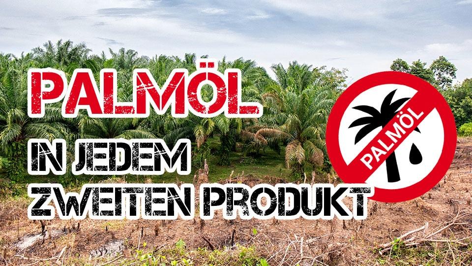 Warum Palmöl in jedem zweiten Produkt ist und nachhaltiges Palmöl nicht die Lösung ist