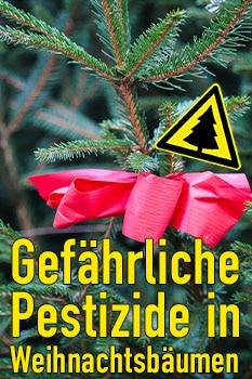 pestizide weihnachtsbaum