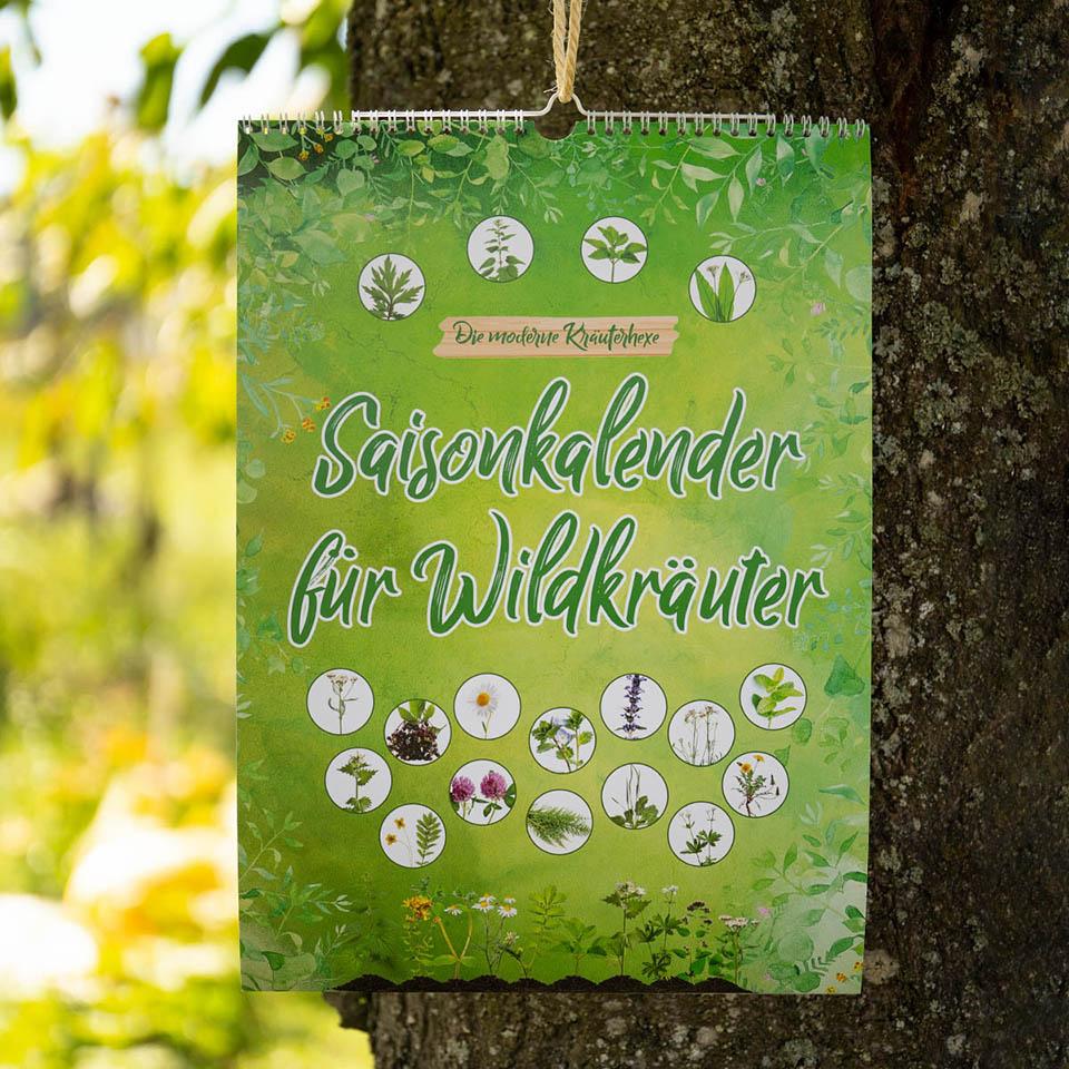 Unser neuer Saisonkalender für Wildkräuter