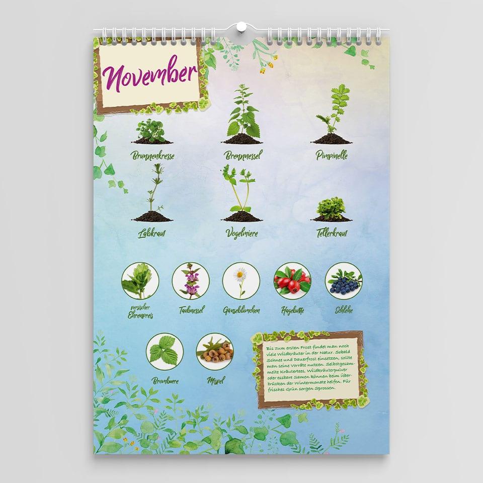 Diese Wildkräuter findest du im Saisonkalender im Monat November