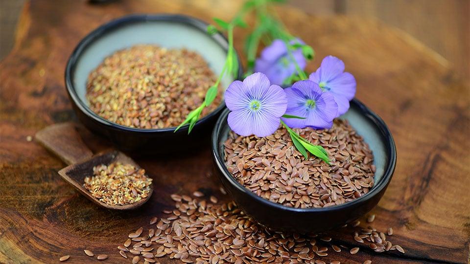 Warum geschrotete Samen bereits nach kurzer Zeit an Nährstoffen verlieren