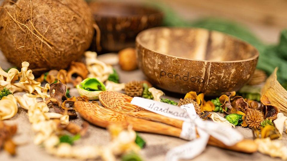 Die Kokosschalen von Pandoo