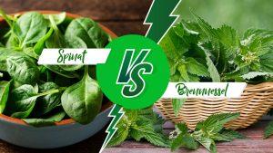 Spinat gegen Brennnessel