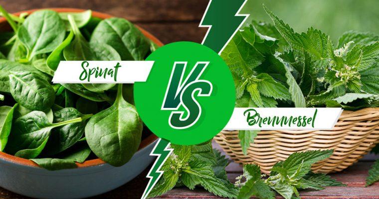 Warum man mehr Wildkräuter essen sollte: Spinat vs. Brennnessel