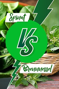 Pin zum Thema Spinat vs. Brennnessel