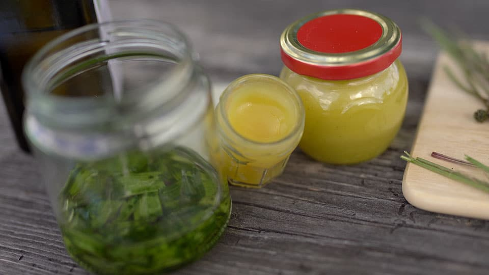Spitzwegerich Salbe und Öl
