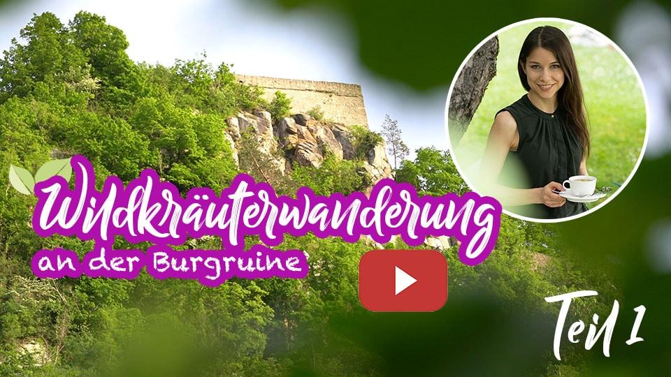 Video zu unserer Wildkräuterwanderung an der Burgruine