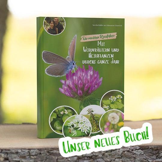 Die moderne Kräuterhexe: Mit Wildkräutern und Heilpflanzen durchs ganze Jahr
