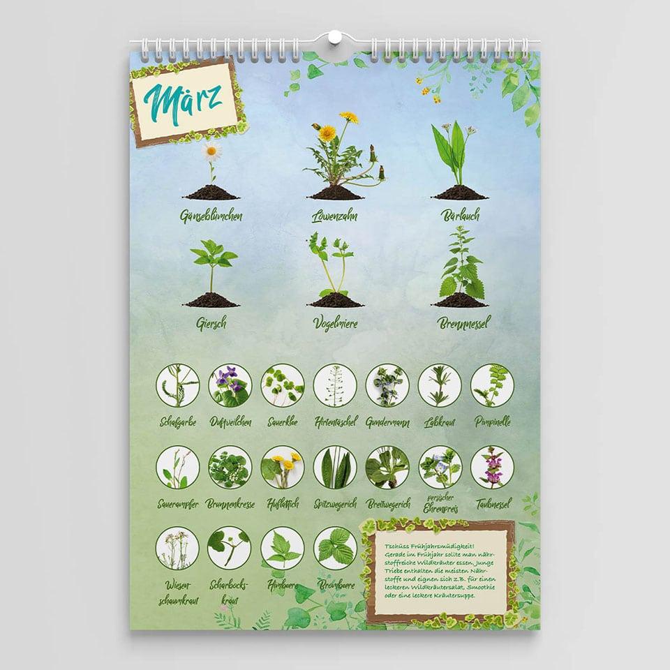 Wildkräuter Kalender