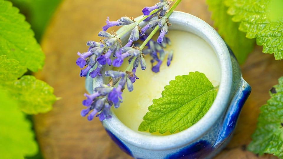 Salbe aus Zitronenmelisse und Lavendel gegen Herpes